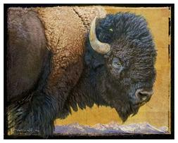 Bison 2 by Chris Vest Art Print Poster or Canvas