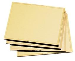 Radnor 4 1/2'' X 5 1/4'' Shade 10 Gold-Coated Poly