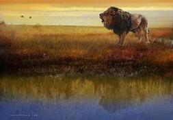 Wall Art Print entitled Savanna Reflection African Lion by R
